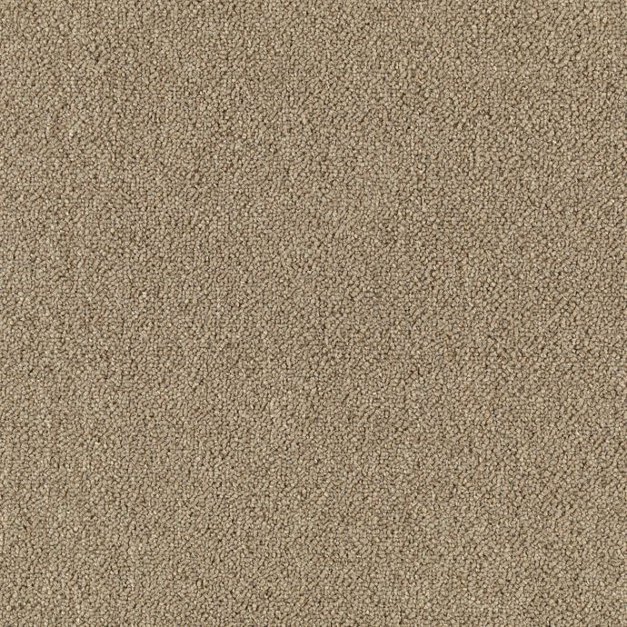 Carpet Defender20 6350-731 Almond