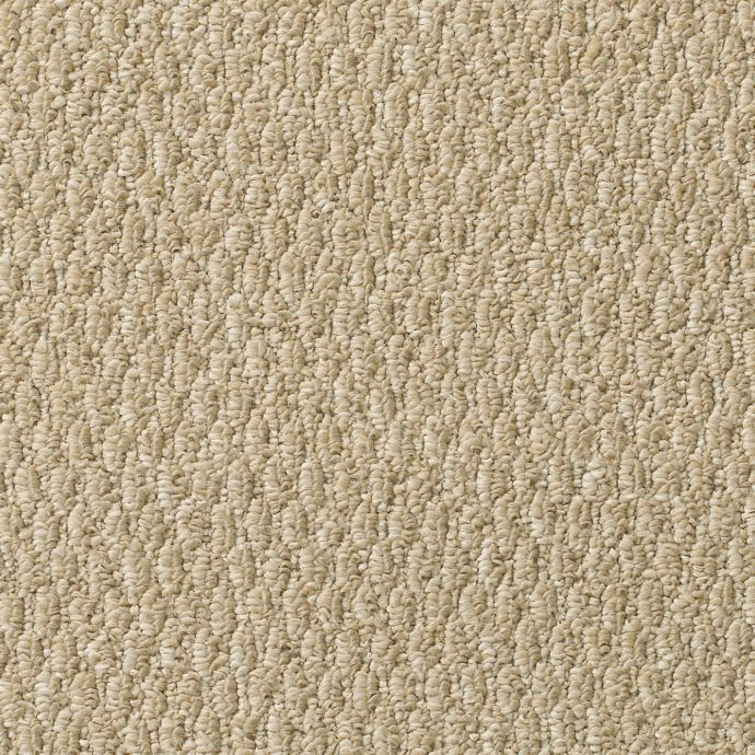 Carpet Arlington Point Mojave 103        main image