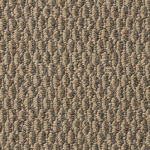 Carpet ArlingtonPoint 1350-108 Charwood