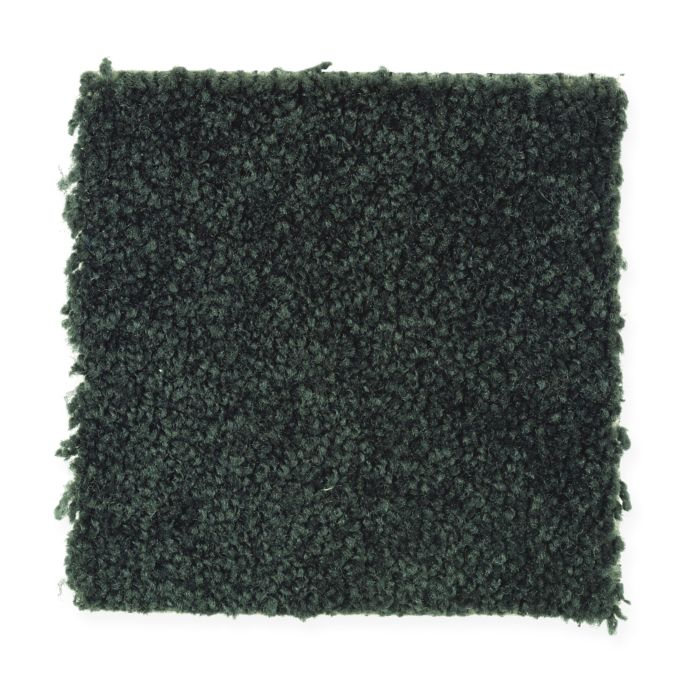 Carpet Oxford Black Forest 120 main image