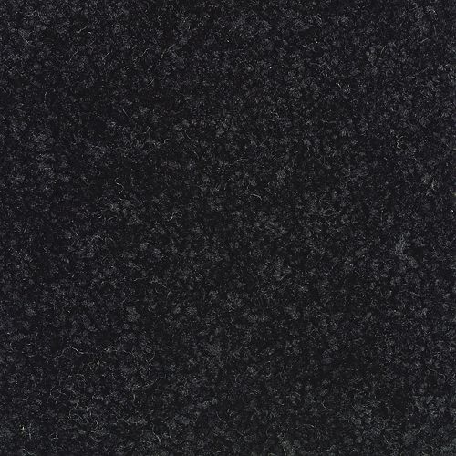 Carpet Active Spirit Tuxedo               999 main image