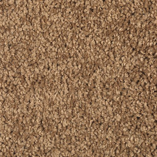 Carpet ExquisiteElement 1V54-509 NewPenney