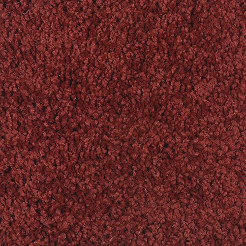 Carpet BrilliantDesign 1I45-519 Ladybug