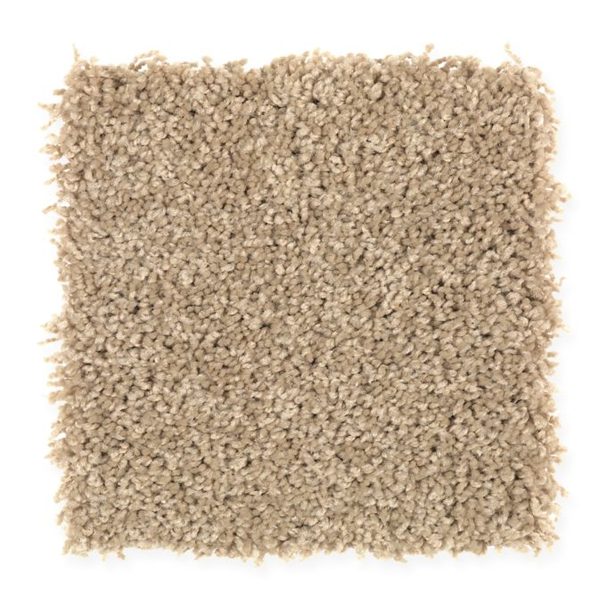 Carpet Brilliant Design Chamomile 535 main image