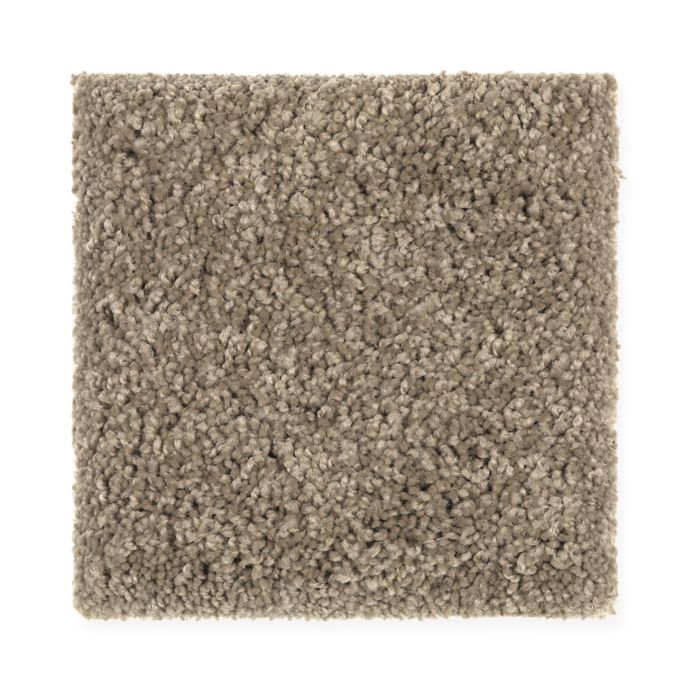 Carpet BrilliantDesign 1I45-546 DryTwig