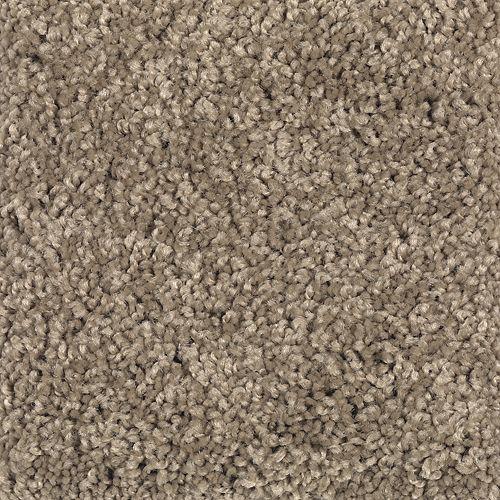 Carpet BrilliantDesign 1I45-546 DryTwig