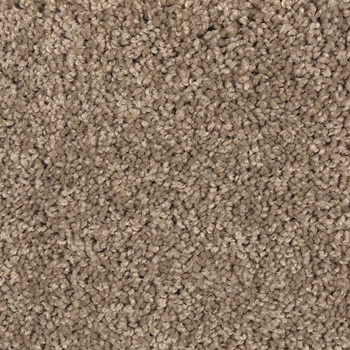 Carpet Brilliant Design Cypress 552 main image