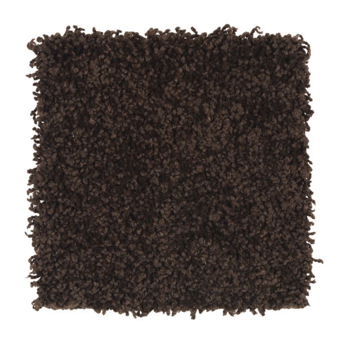 Carpet Brilliant Design Hot Fudge 520 main image