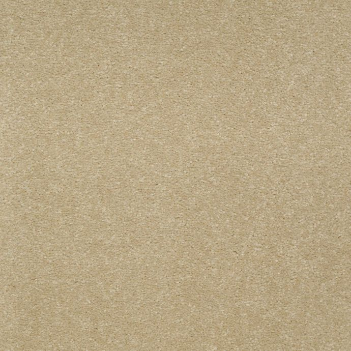 Calming Color Mission Beige 841