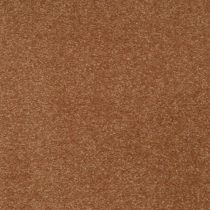 Dramatic Hue Copper Penny 251