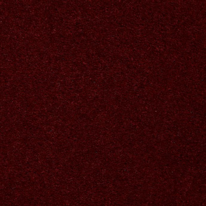 Carpet AcceleratorPlus 1I88-385 CandyApple