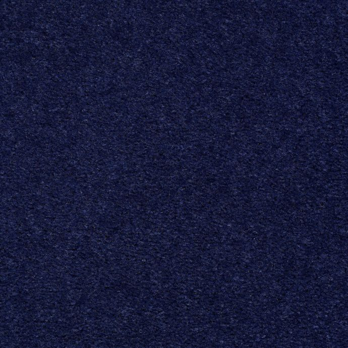Carpet Accelerator Plus Real Indigo 585 main image