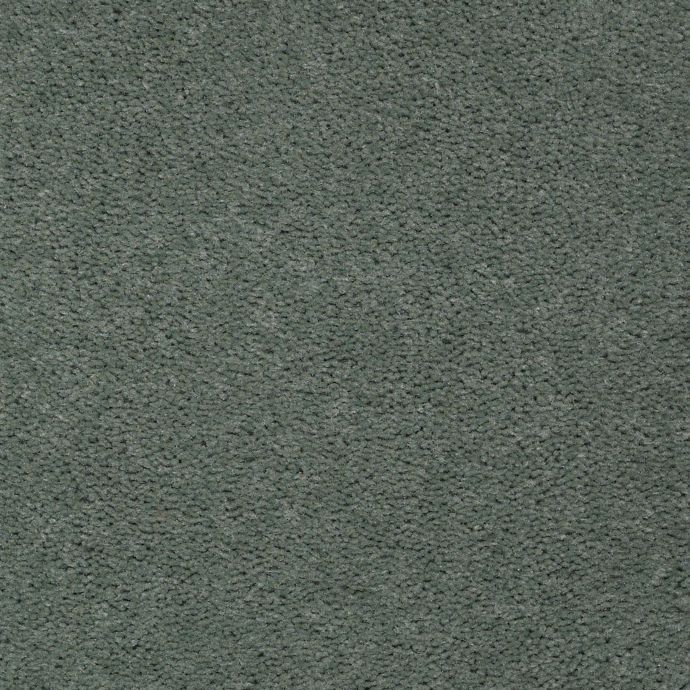 Carpet AcceleratorPlus 1I88-665 TealSplash