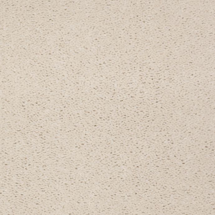 Carpet Accelerator Plus Sesame Seed 731 main image