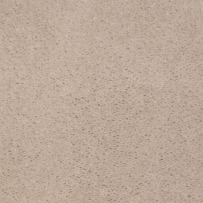 Top Line Sand Dollar 736