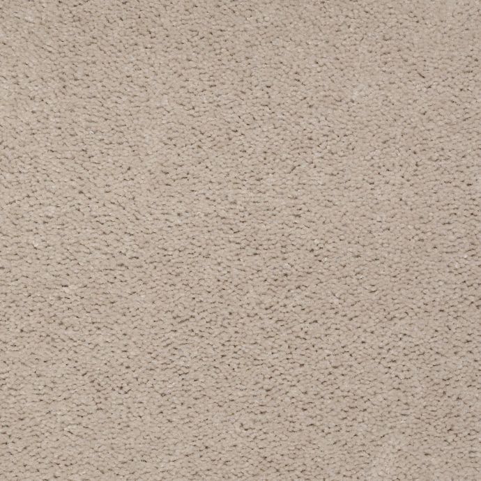 Carpet AcceleratorPlus 1I88-759 ShadowTaupe