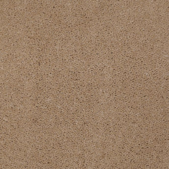 Carpet AcceleratorPlus 1I88-853 Toffee