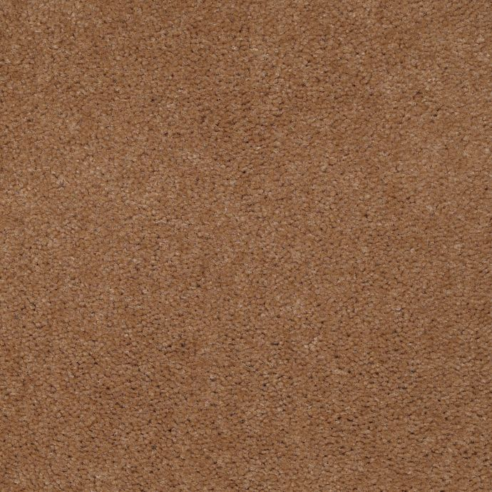 Carpet Accelerator Plus Spicecake 861 main image