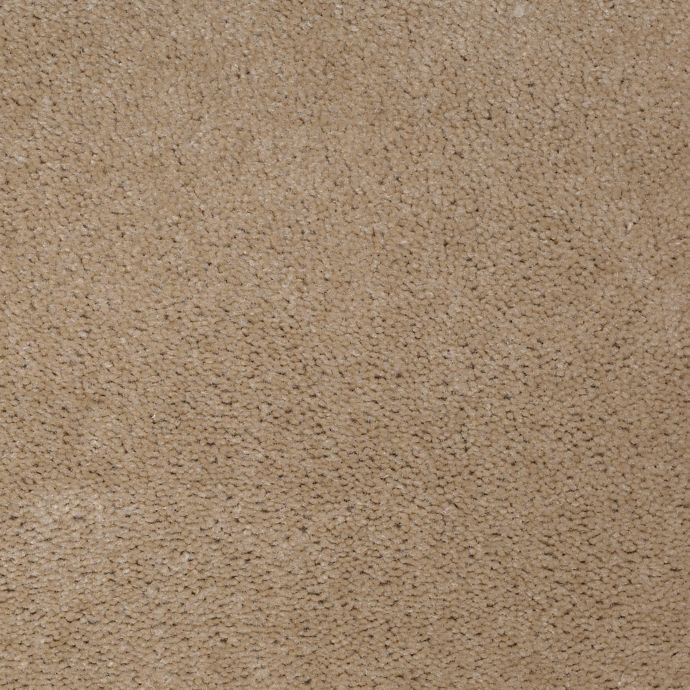 Carpet AcceleratorPlus 1I88-868 Almond