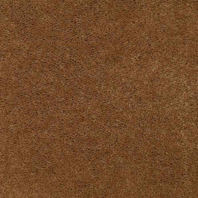 Carpet AcceleratorPlus 1I88-872 Chestnut