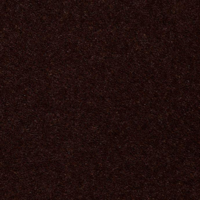 Carpet AcceleratorPlus 1I88-888 Espresso