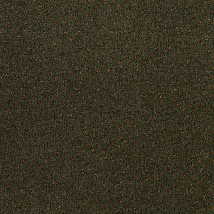 Carpet ClassicVision 1M37-667 Botanical
