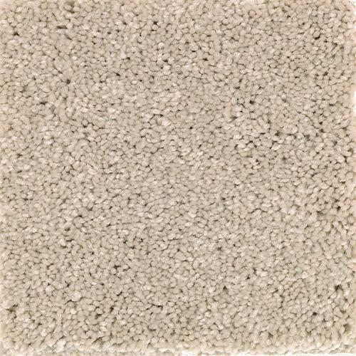 Carpet AtlanticCoast 1P84-116 RockGarden
