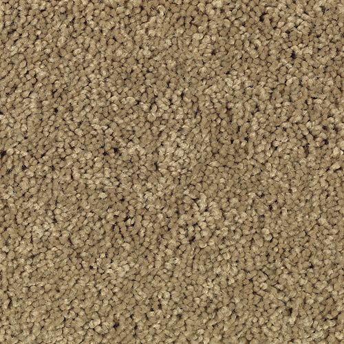 Carpet AtlanticCoast 1P84-106 OrientalMusk
