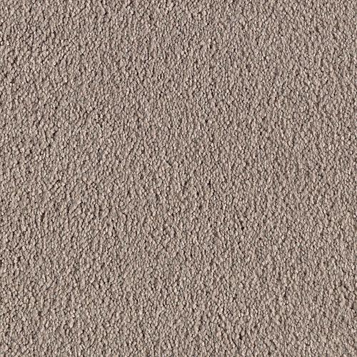 Carpet AtlanticCoast 1P84-123 Ostrich