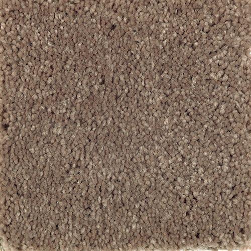 Carpet AtlanticCoast 1P84-118 PineCone