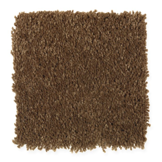 Carpet Atlantic Coast Allspice 101 main image