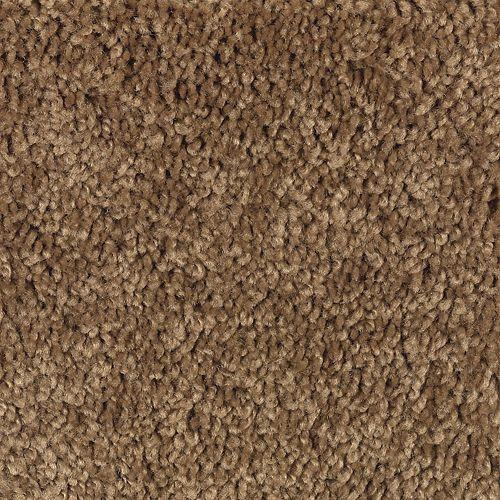 Carpet BrightFuture 1P13-101 CedarShingle