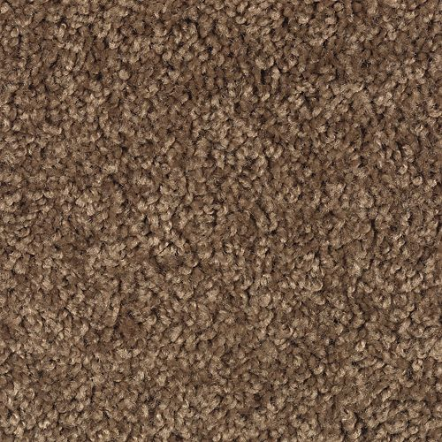 Carpet BrightFuture 1P13-109 NaturesTrail