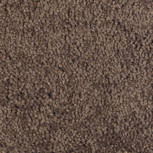 Carpet BrightFuture 1P13-113 RusticBrown
