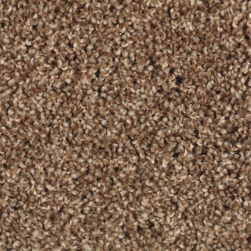 Carpet TruePerfection 1P50-872 CopperPenny