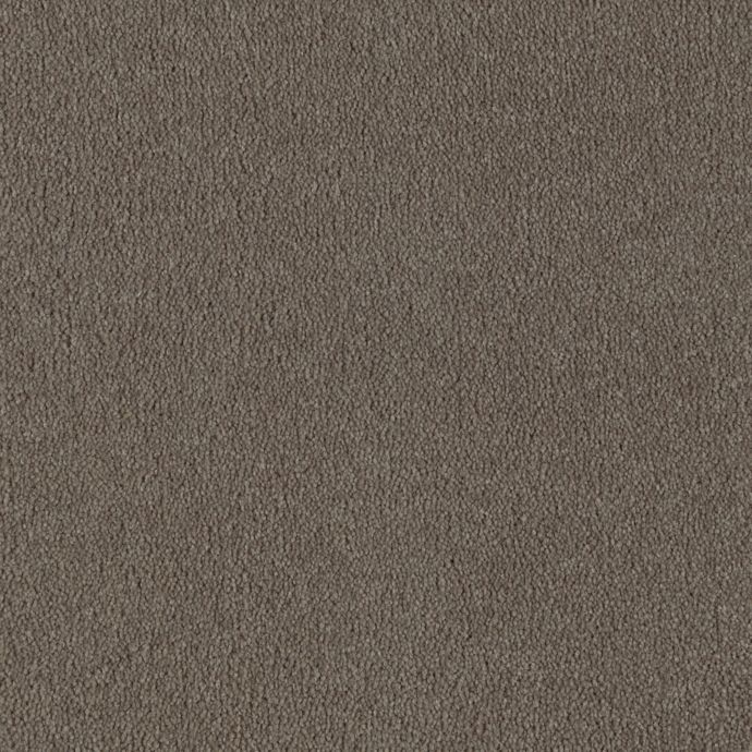 Springfield Manor Brushed Suede 139