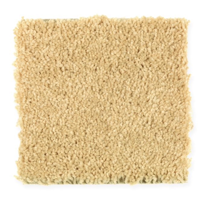 <div><b>Fiber Brand</b>: EverStrand Revive <br /><b>Style</b>: Texture and Shag <br /><b>Fiber Type</b>: Polyester <br /><b>Application</b>: Residential <br /></div>