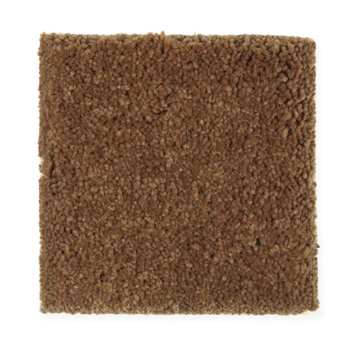 Carpet AmericanLegacy 1P82-278 AutumnAir