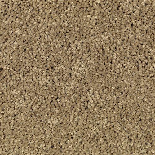 Carpet American Legacy Strudel 851 main image