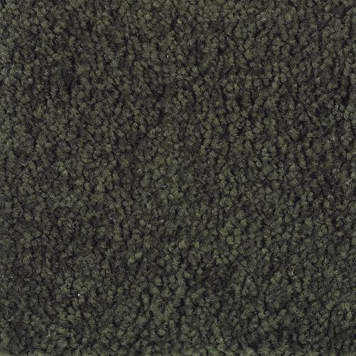 Carpet American Legacy Grecian Olive 676 main image