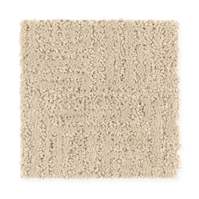 Carpet DesignEvolution 1R34-516 CreekSand