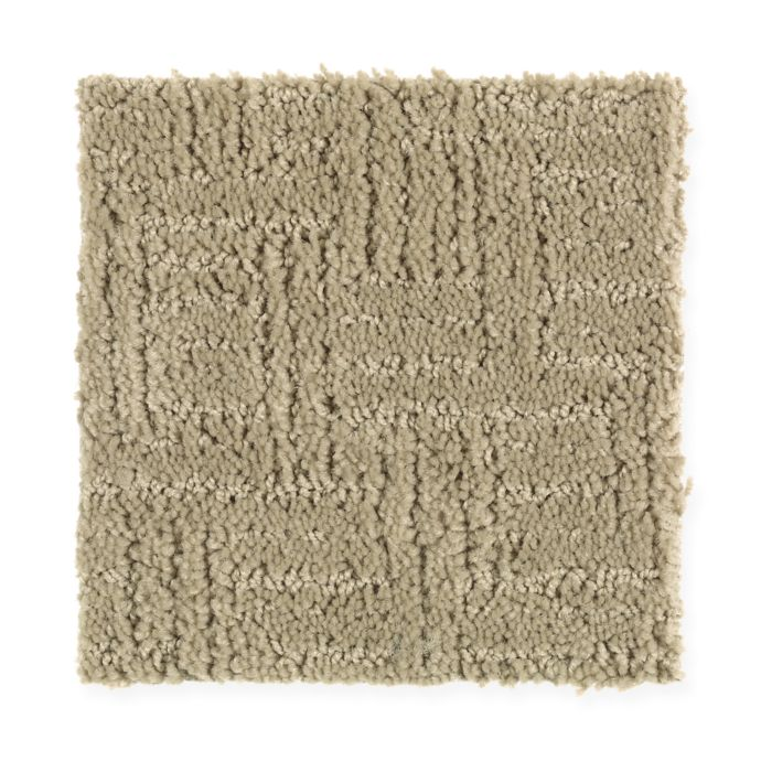 Carpet DesignEvolution 1R34-511 IcedMocha