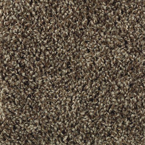 Carpet PerfectMix 1R54-889 Leatherbound