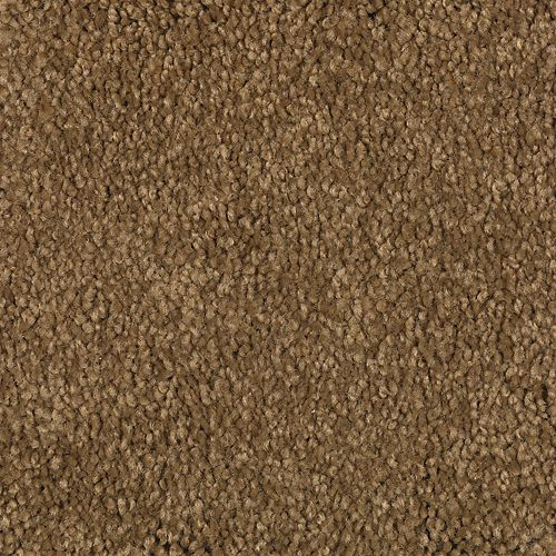 Carpet Coastal Path III Maple Syrup 507 main image