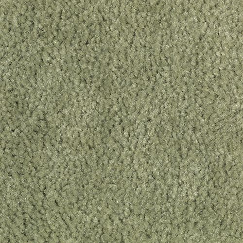 Carpet Savory Cilantro Leaf 656 main image