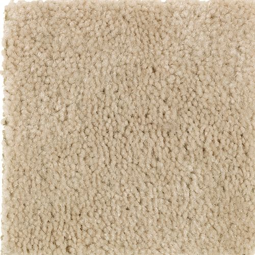 Carpet Savory Bisque 725 main image