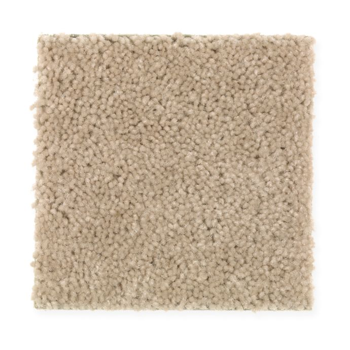 Carpet Savory 1S81-733 DriedApples