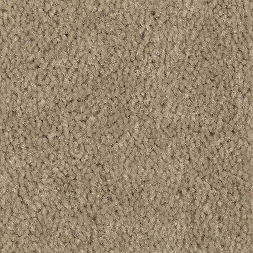 Carpet Savory Mushroom 745 main image