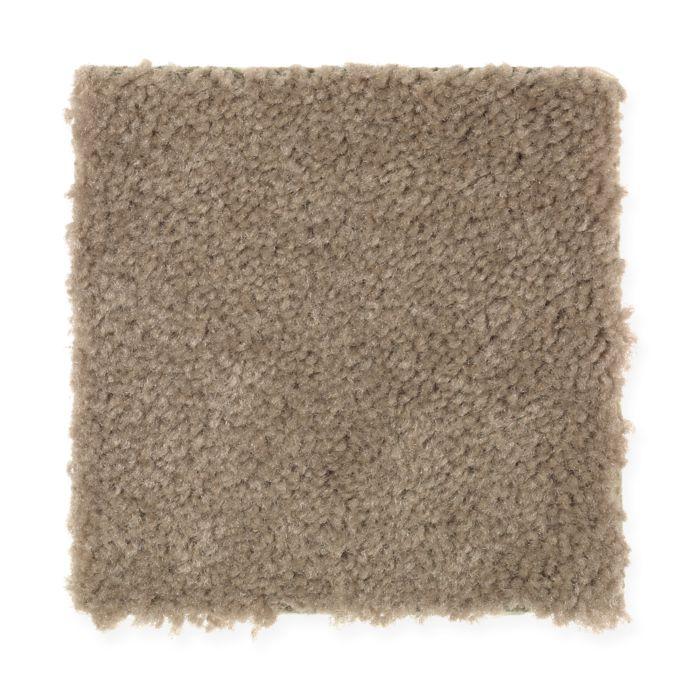 Carpet Savory 1S81-758 MochaSwirl