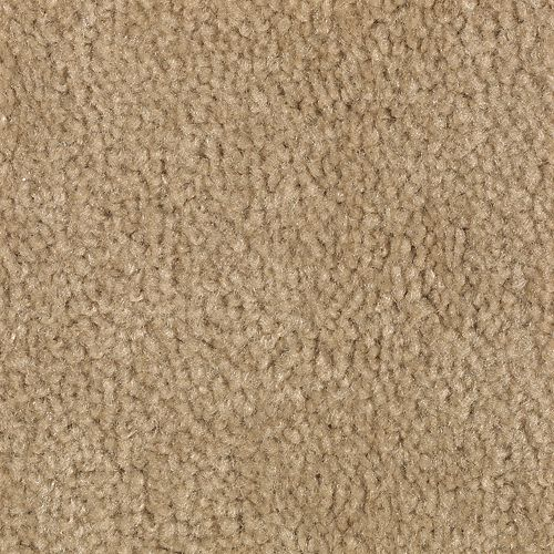 Carpet Savory Warm Honey 761 main image